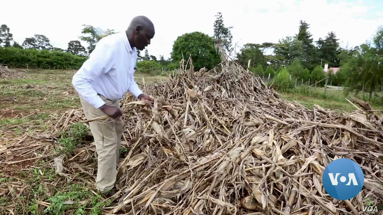 Inescapable Effects of Global Warming Jeopardize Livelihoods in Africa