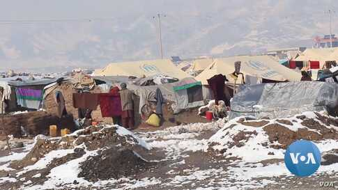 Extreme Cold Takes Its Toll on Displaced Afghans