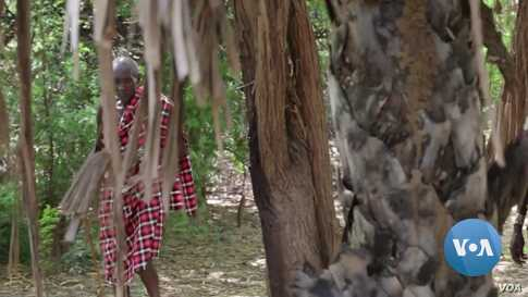 Kenya's Turkana Herders Facing Droughts, Floods