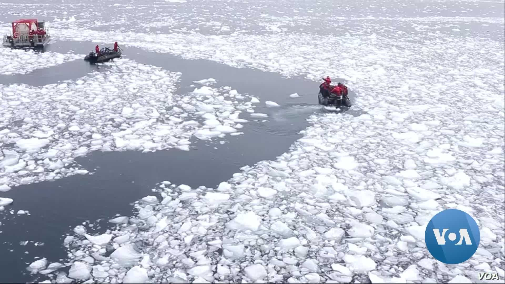 Antarctic Sea Ice Plunges from Record High to Record Lows