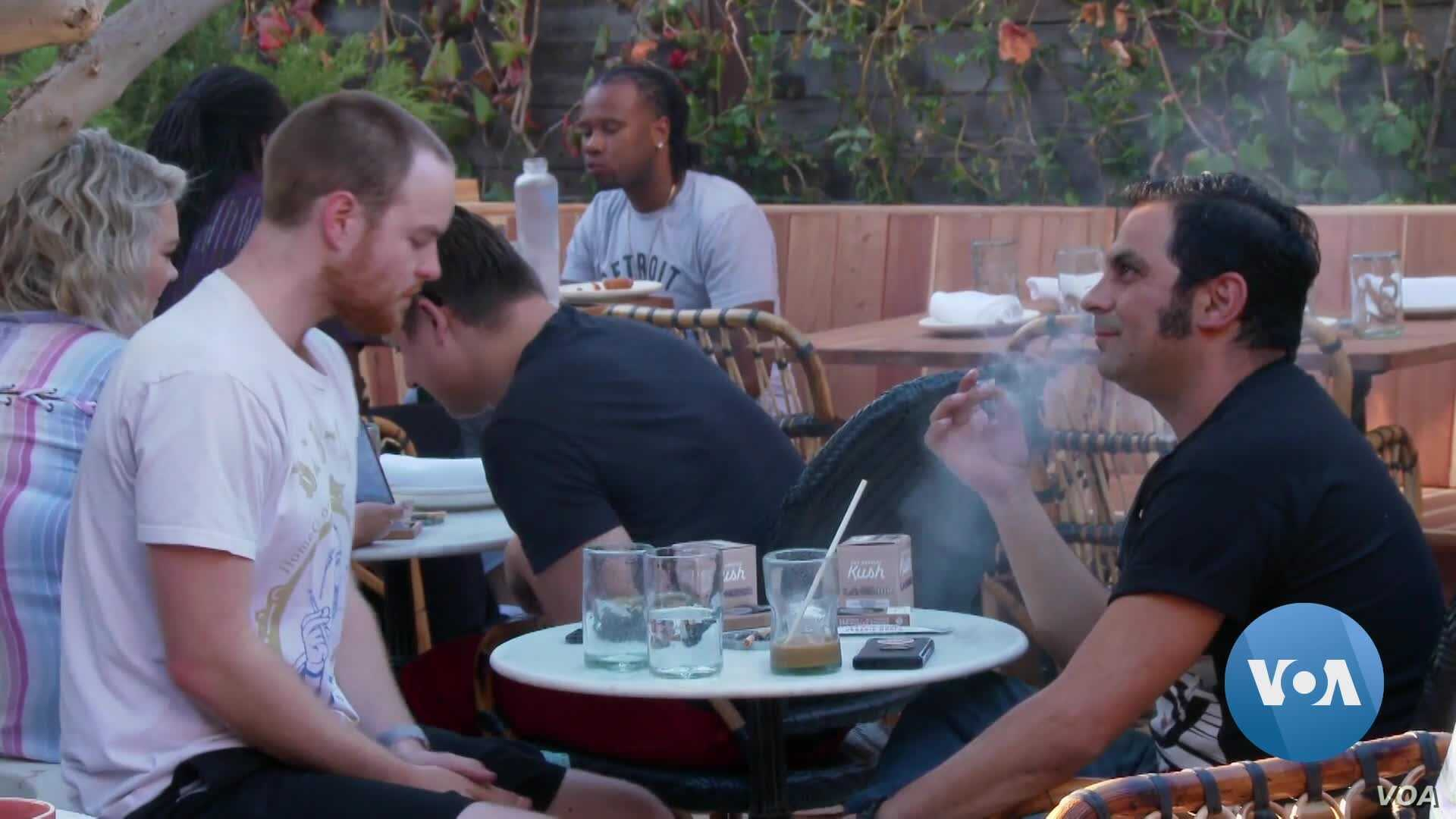 America's First Cannabis Café Opens In West Hollywood