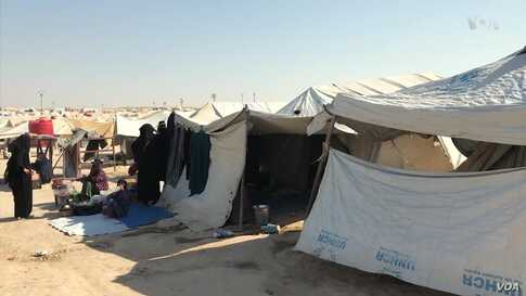 Local Officials: IS Women in Syria's al-Hol Camp Pose Security Risk
