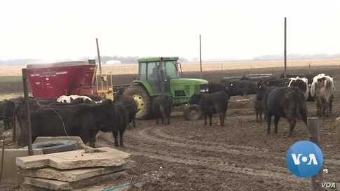 US Farmers Weather Global Economic Storm of COVID-19