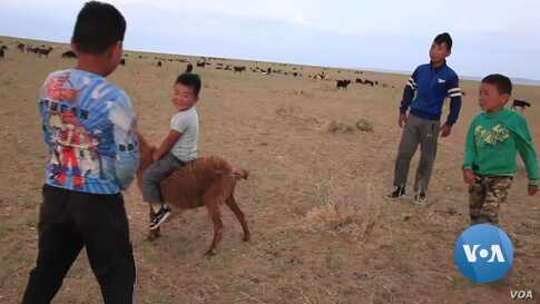The Naadam Festival of Mongolia: Tradition Corrupted by Business