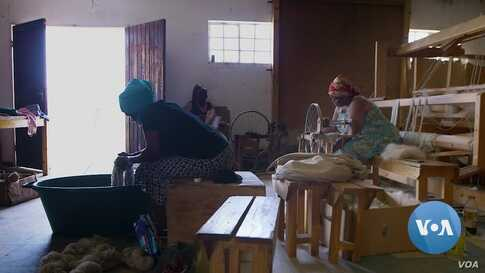 Lesotho Wool Industry Crisis Plunges Farmers into Despair