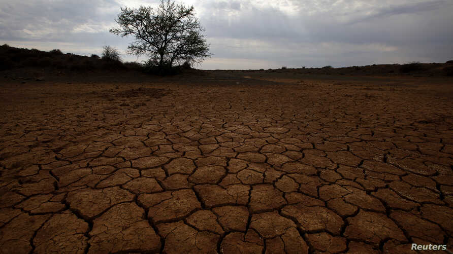 FILE - Cracked earth marks a dried-up watering hole on a farm near Aberdeen in the Karoo in South Africa.