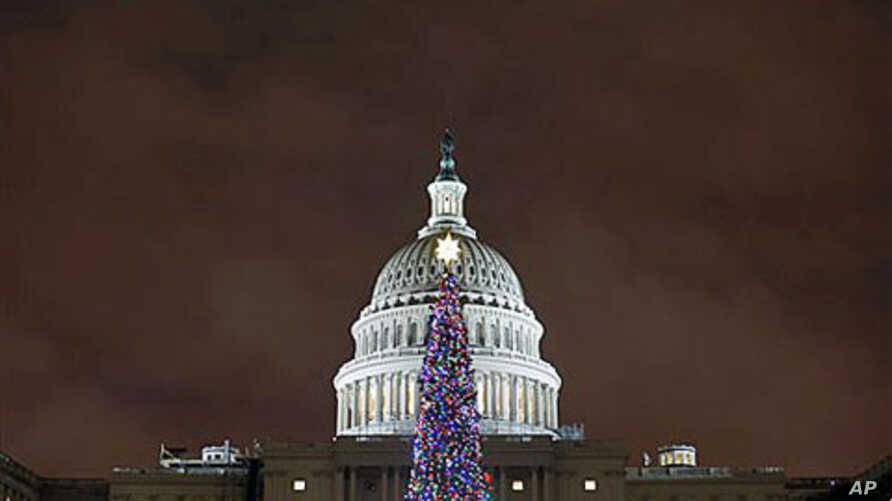 The U.S. Capitol Christmas tree is seen after a lighting ceremony, in Washington, D.C., December 6, 2011.