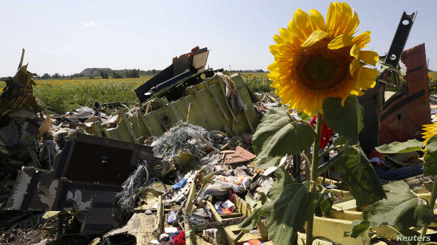 Nearly 300 people, 193 of them Dutch citizens, were killed when Malaysia Airlines MH17 was brought down in eastern Ukraine, where separatists are battling government forces.