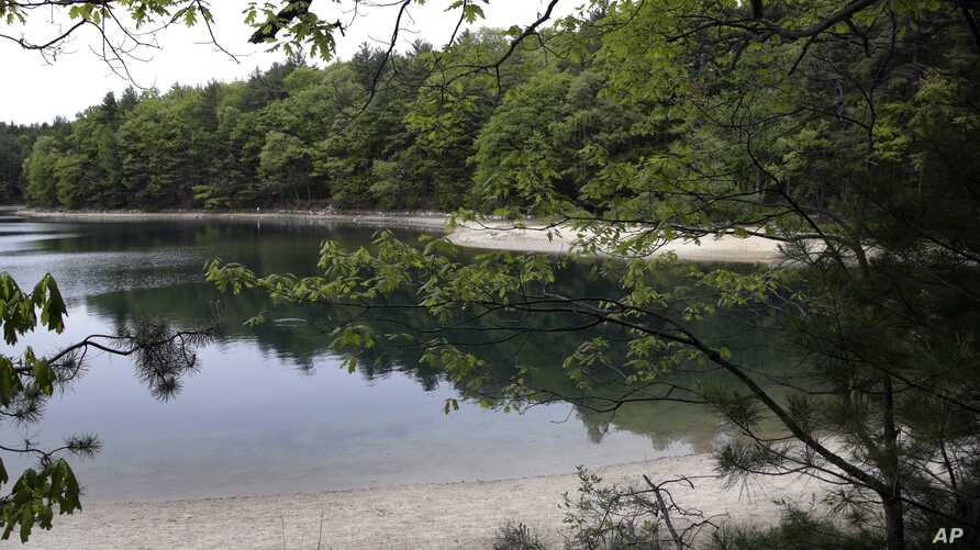 FILE - This photo taken May 23, 2017, shows a view of Walden Pond in Concord, Mass., where the 19th-century American philosopher and naturalist Henry David Thoreau spent two years in solitude and reflection. A new Playstation game devoted to the Thor