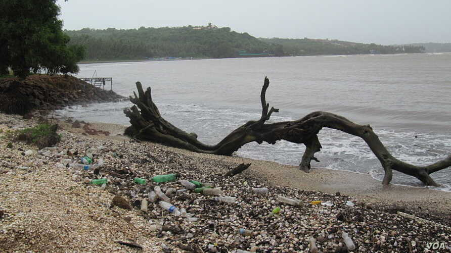 Plastic trash on the shoreline of cocoa beach in India. WIKIMEDIA