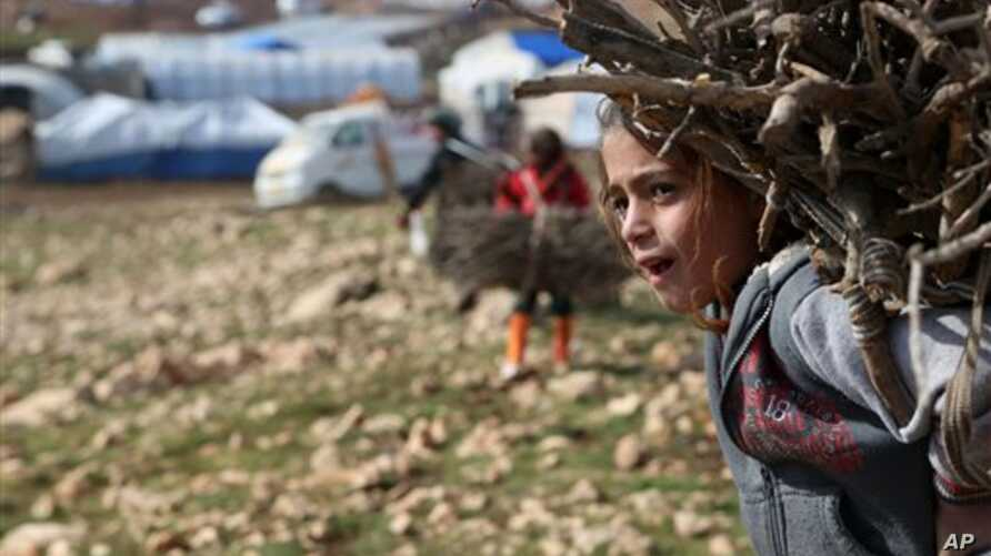 An Iraqi Yazidi girl carries wood in a conflict area in northern Iraq. The United Nations Children's Fund says one in four shool-aged children in conflict areas is not in school.