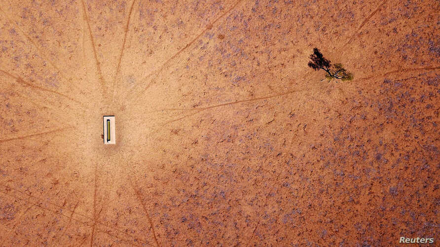 A lone tree stands near a water trough in a drought-affected paddock on Jimmie and May McKeown's property, located on the outskirts of Walgett, in New South Wales, Australia, July 20, 2018.