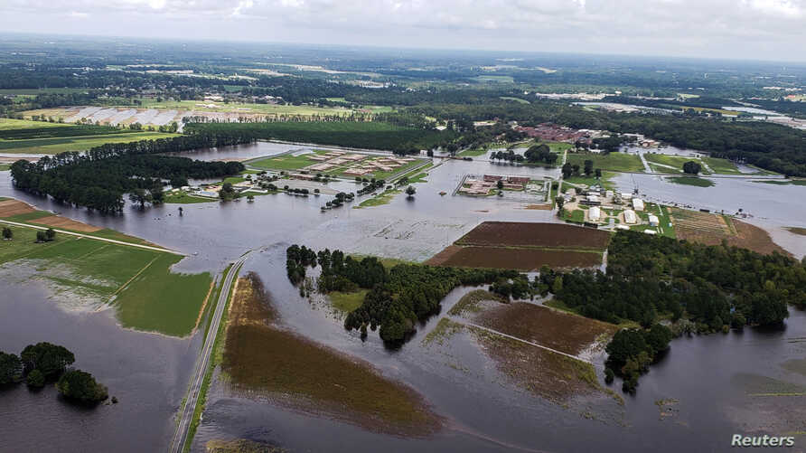 Aerial view of farms flooded after the passing of Hurricane Florence in eastern North Carolina, U.S., Sept. 17, 2018.