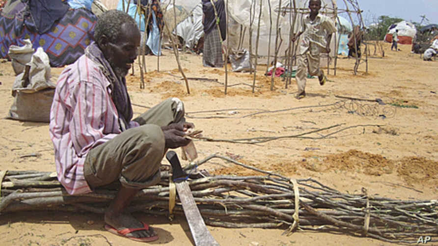 A Somali man from southern Somalia cuts tree branches to construct a makeshift shelter in refugee camp in Mogadishu, Somalia, August 11, 2011.