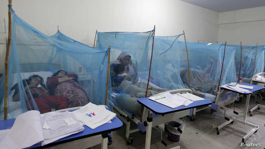 FILE - A woman holds her son, suffering from dengue fever, as she sits under a mosquito net inside a dengue ward of a local hospital in Rawalpindi, Pakistan.