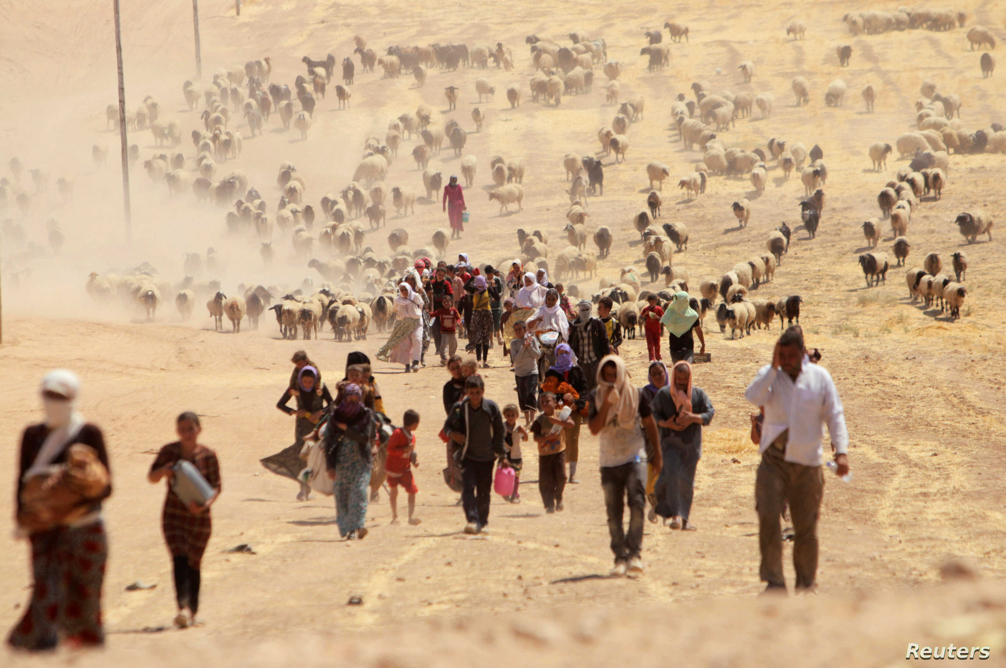 Displaced people from the minority Yazidi sect, fleeing violence from forces loyal to the Islamic State in Sinjar town, walk towards the Syrian border, on the outskirts of Sinjar mountain, near the Syrian border town of Elierbeh of Al-Hasakah Governo...