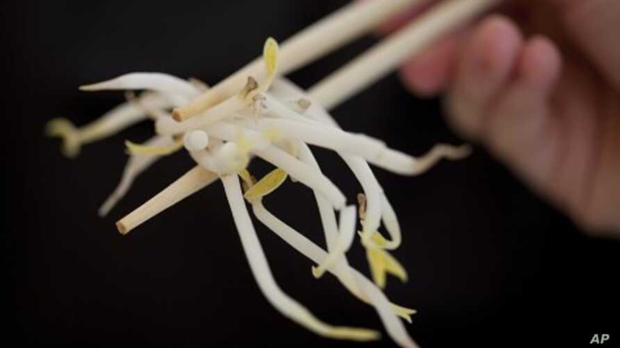 A woman holds bean sprouts with chopsticks in Berlin, Germany, June 5, 2011