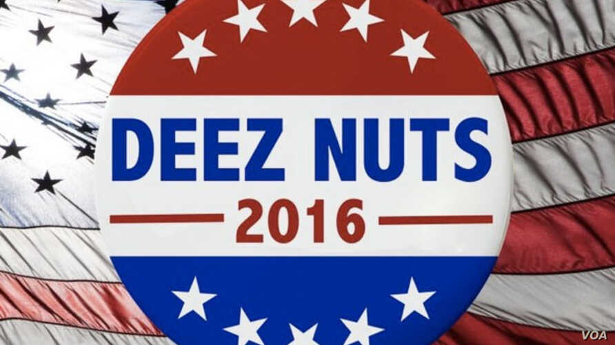 """A poster, one of many circulating on social media, shows a campaign button in support of """"Deez Nuts"""" for President in 2016."""