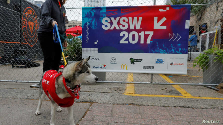 A dog up for adoption, is taken for a walk by the organization Austin Pets Alive, during the South by Southwest (SXSW) Music Film Interactive Festival 2017 in Austin, Texas, U.S., March 12, 2017.