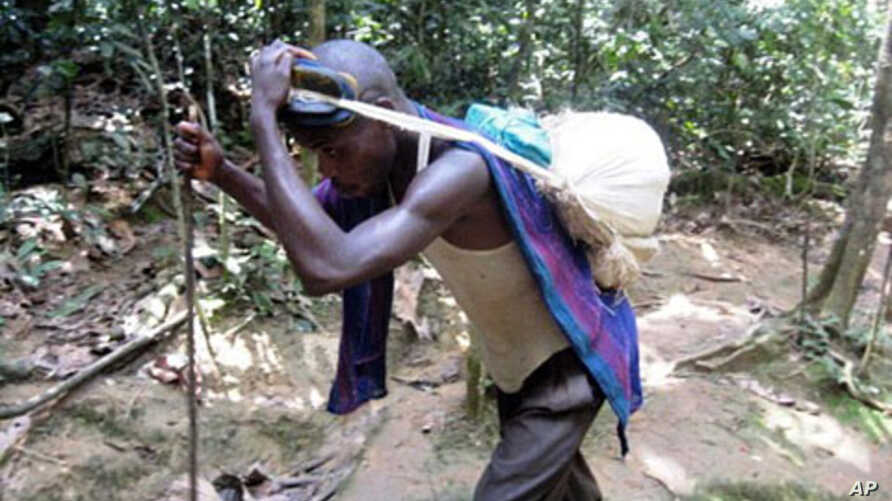 A Congolese man carries a load of mineral chips harvested from inside a deep cassiterite mine located west of the eastern Congolese town of Goma in the north Kivu region (File 2010)