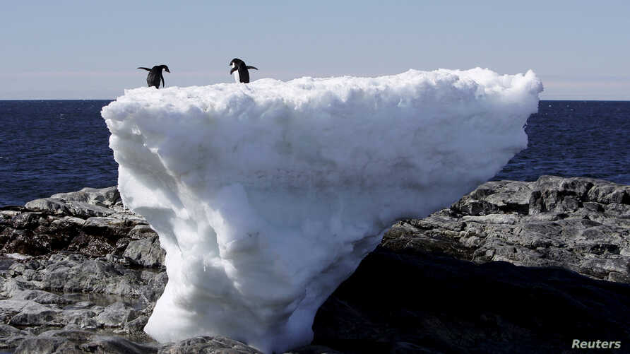 FILE - Two Adelie penguins stand atop a block of melting ice on a rocky shoreline at Cape Denison, Commonwealth Bay, in East Antarctica, Jan. 1, 2010.