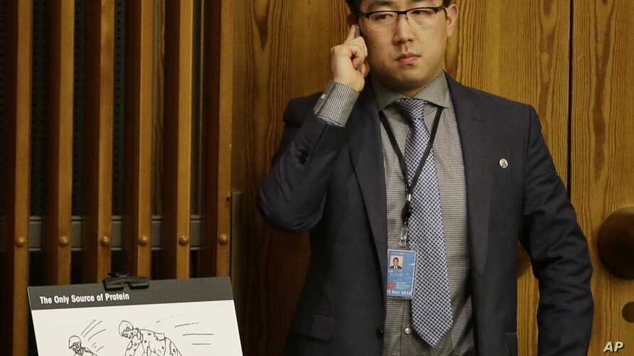 FILE - Kim Ju Song, a member of the North Korean delegation, stands next to a depiction of human rights abuses at a prison camp during a panel discussion on human rights abuses in North Korea at U,N. headquarters in New York, Oct. 22, 2014.