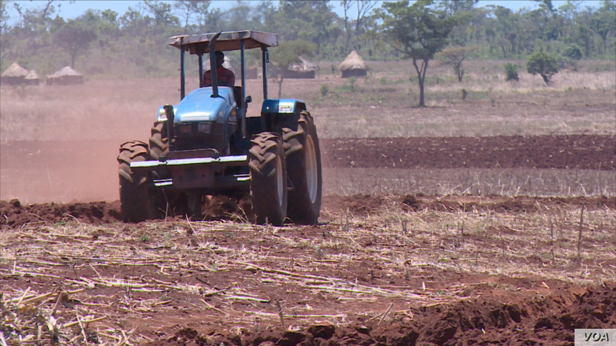 A tractor tills land at Magutu farm in Mazowe district, about 40 km (25 miles) north of Zimbabwe's capital Harare, Nov. 12, 2018, ahead of the rainy season, expected any time now. (C. Mavhunga/VOA)