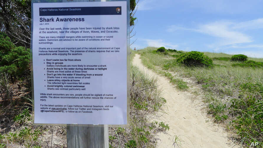FILE - A sign warns visitors about the possible presence of sharks along the Cape Hatteras National Seashore in Cape Hatteras, North Carolina, July 7, 2015.
