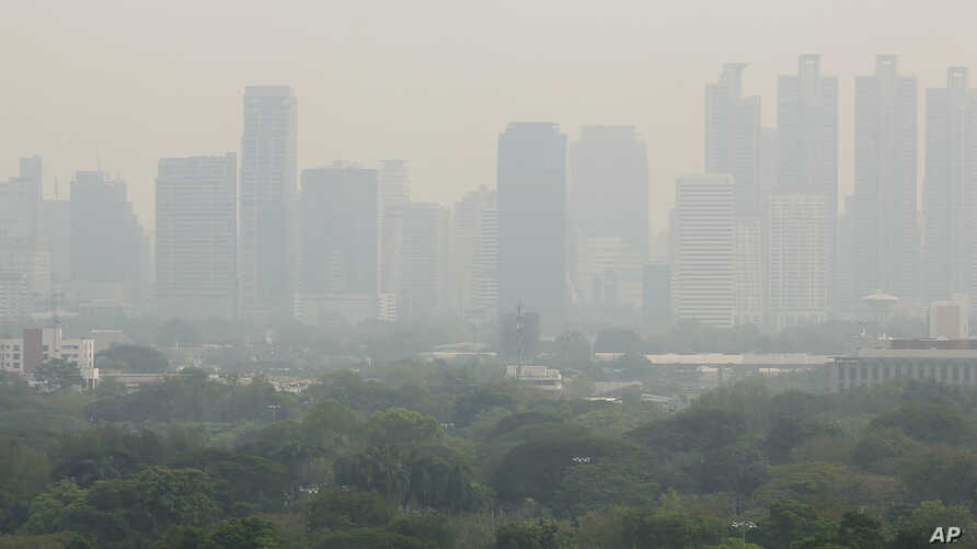 A thick layer of smog covers Lumpini Park in central Bangkok, Thailand, Thursday, Jan. 31, 2019.