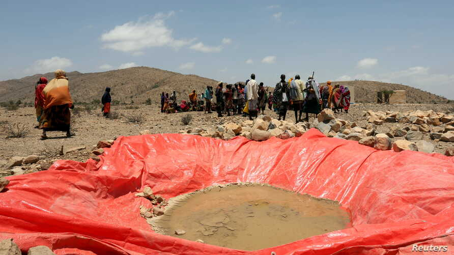 FILE - Displaced people gather at an artificial water pan near Habaas town of Awdal region, Somaliland, April 9, 2016. Across the Horn of Africa, millions have been hit by the severe El Nino-related drought.