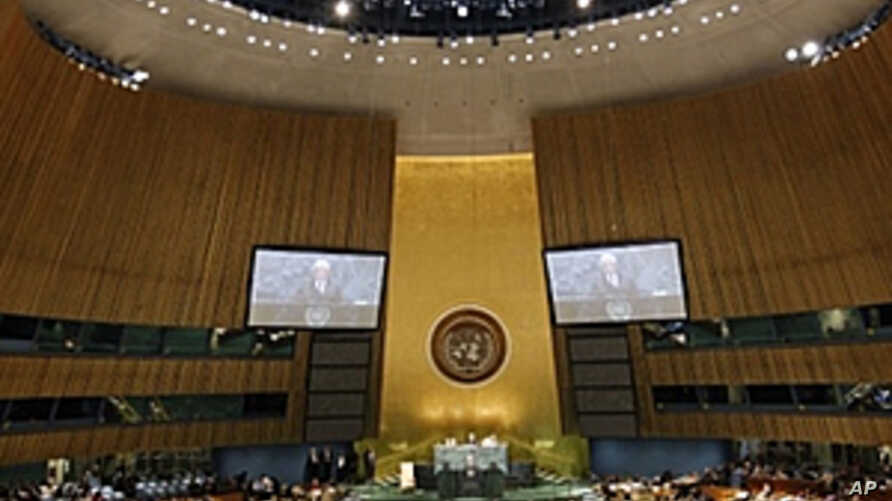 United Nations General Assembly (File)