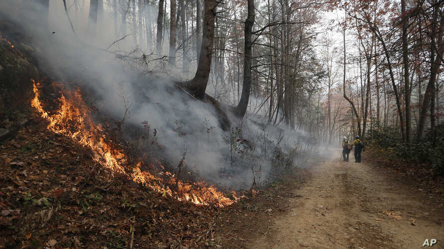 Firefighters walk down a dirt road a wildfire burns a hillside Tuesday, November 15, 2016, in Clayton, Georgia. The U.S. Forest Service is tracking wildfires that have burned 80,000 acres across the South.