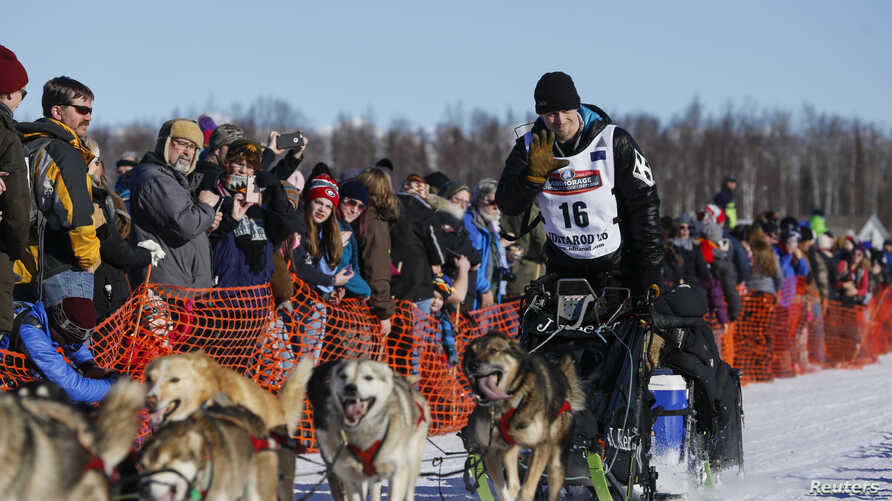 Dallas Seavey and team leave the start chute at the restart of the Iditarod Trail Sled Dog Race in Willow, Alaska March 6, 2016.