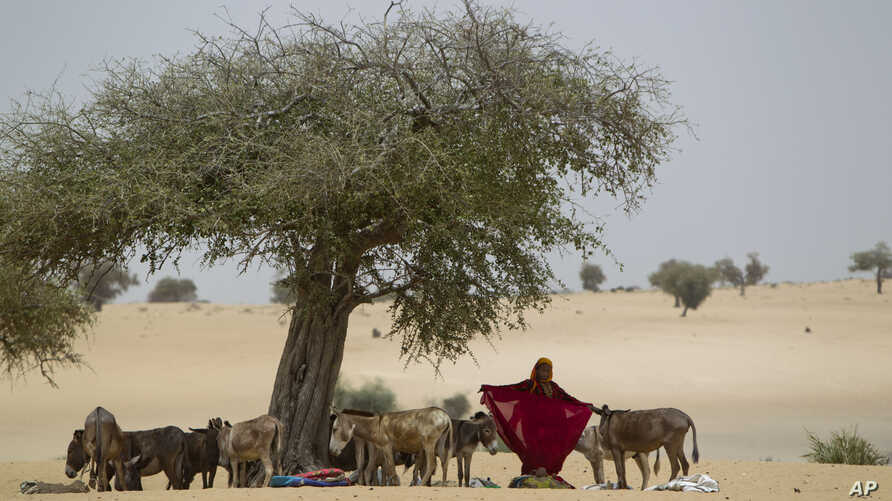 A woman prepares her shawl as her baby lies on the ground, after arriving by donkey to have the baby examined for signs of malnutrition at a walk-in feeding center in Dibinindji, a desert village in the Sahel belt of Chad, April 18, 2012.