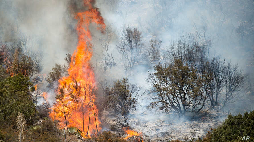 The Blue Cut fire burns in Upper Lytle Creek near Wrightwood, Calif., Aug. 19, 2016. Area residents were still being kept from their homes Saturday, even though evacuation orders were lifted for tens of thousands of others in Southern California.