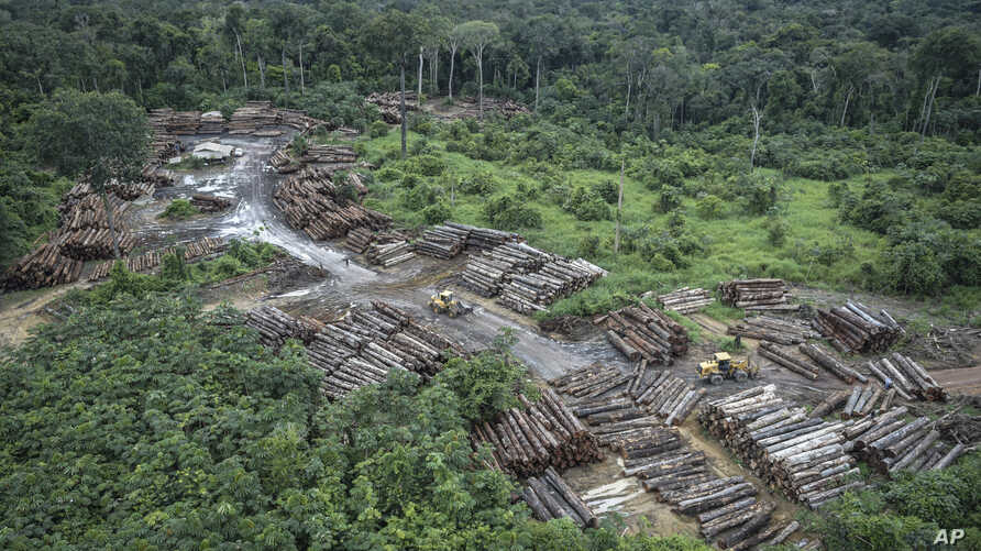 This May 8, 2018 photo released by the Brazilian Environmental and Renewable Natural Resources Institute (Ibama) shows an illegally deforested area on Pirititi indigenous lands as Ibama agents inspect Roraima state in Brazil's Amazon basin.