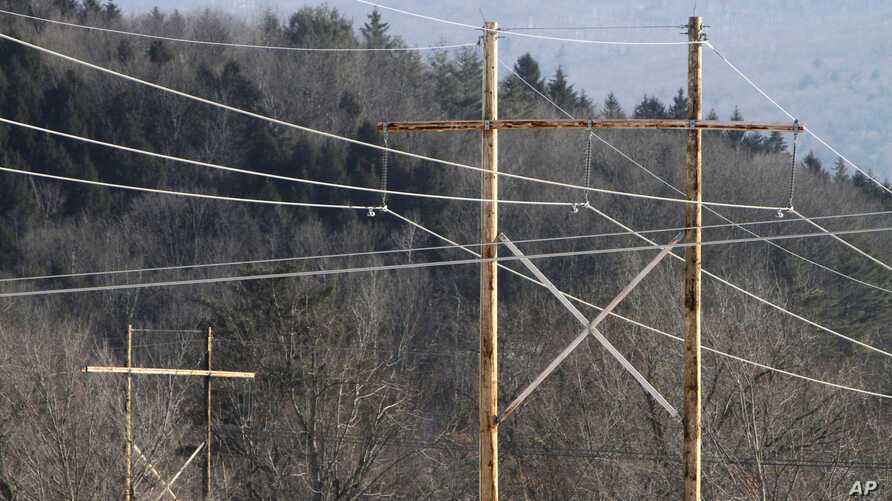 The Burlington Electric Department says it has found malware linked to Grizzly Steppe, the Homeland Security name for the Russian campaign linked to recent hacks.