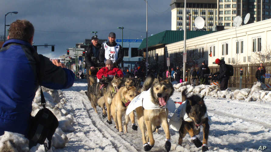 FILE - In this March 7, 2015, file photo, musher Peter Kaiser, of Bethel, Alaska, leads his team past spectators during the ceremonial start of the Iditarod Trail Sled Dog Race, in Anchorage, Alaska. Kaiser has become the latest Alaska Native to win