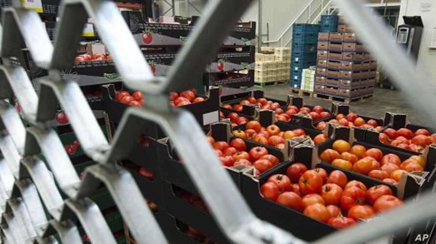 Boxes containing tomatoes stand behind a fence at the closed shop of a distributor at the central fruit and vegetable market in Berlin (File)