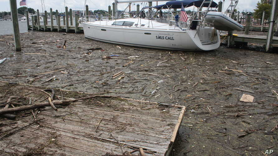 FILE - Debris washed into the Chesapeake Bay from record rainfall accumulates around a sailboat in Annapolis, Md., Aug. 1, 2018.,