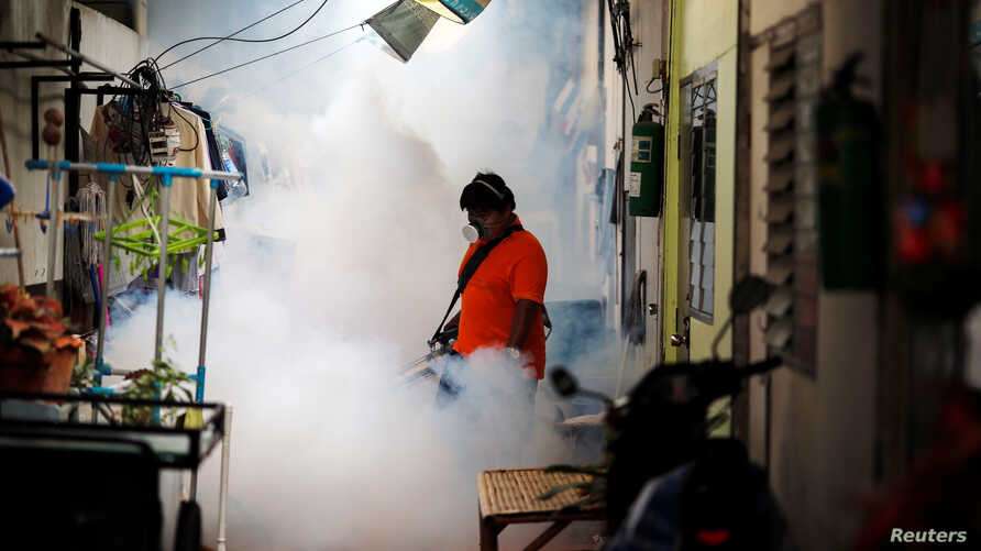 A city worker fumigates the area to control the spread of mosquitoes at a university in Bangkok, Thailand, September 13, 2016.