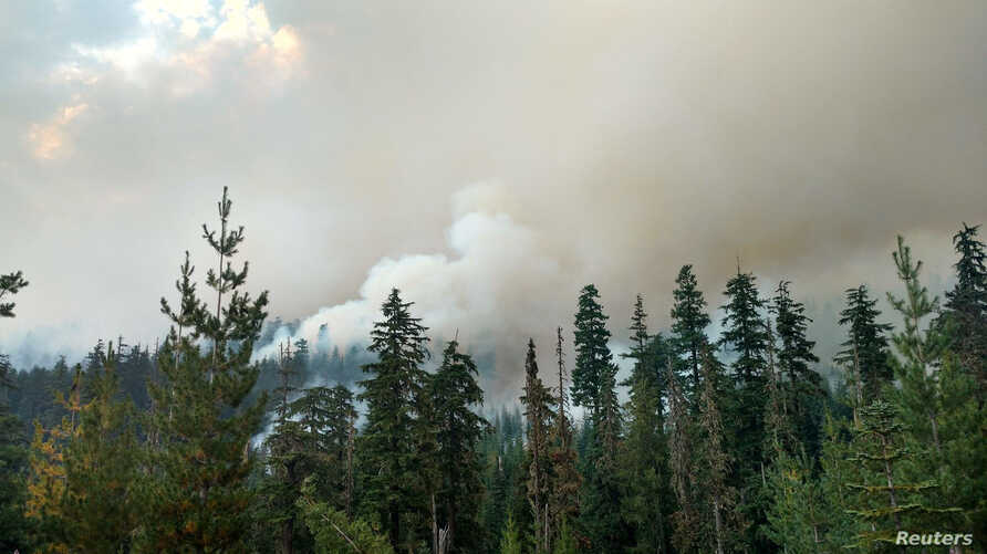 Wildfire burns in Willamette National Forest, Oregon. Elsewhere in the state wildfires have forced evacuations and closed roads near prime eclipse-viewing locations.