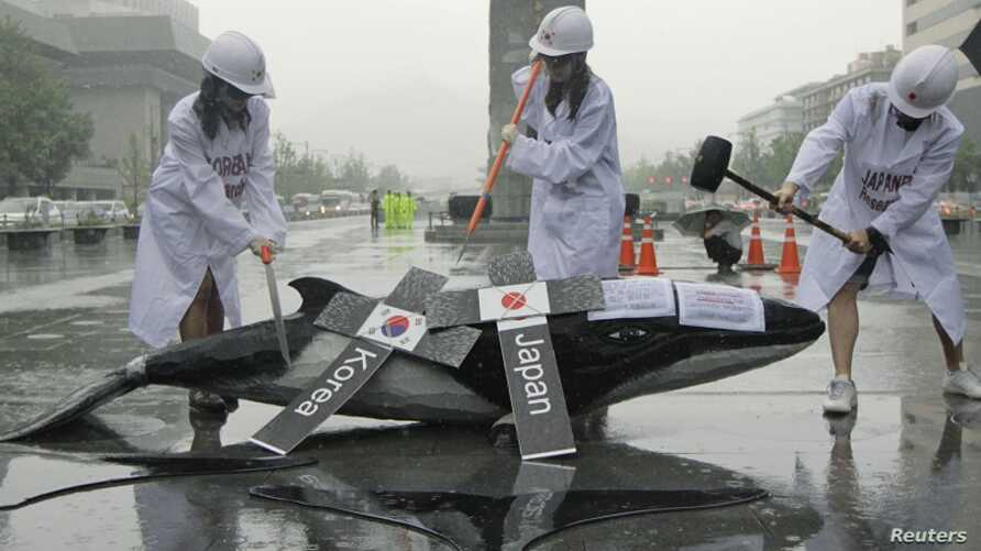 Environmental activists demonstrate with a mock whale, during a protest against the plans of the South Korean government to resume hunting whales for research purpose, in central Seoul July 6, 2012.