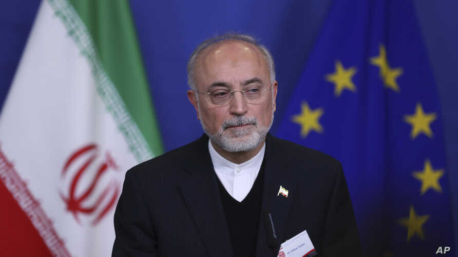 Iran's Vice-President and Head of the Atomic Energy Organisation Ali Akbar Salehi listens to a question during a joint news conference with European Union Climate Action and Energy Commissioner Miguel Arias Canete at the European Commission headquart