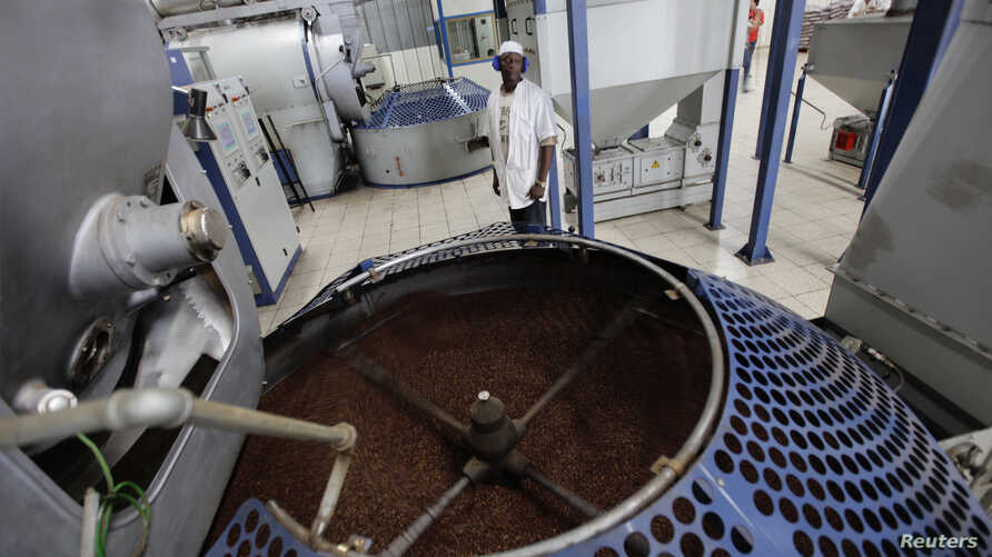 FILE - A worker stands beside a container of roasted coffee beans in a factory in Havana, Cuba, April 7, 2011.