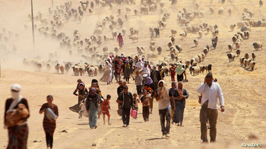 Displaced people from the minority Yazidi sect, fleeing violence from forces loyal to the Islamic State in Sinjar town, walk toward the Syrian border, on the outskirts of Sinjar mountain, near the Syrian border town of Elierbeh of Al-Hasakah Governor