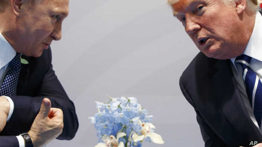 Trump World Friends and Foes