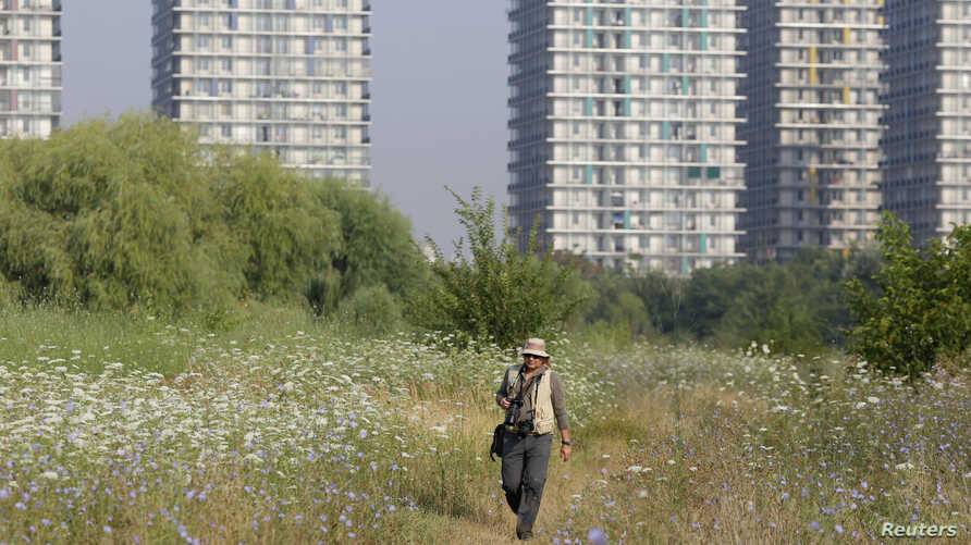 Helmut Ignat, wildlife photographer and founding member of the Vacaresti Nature Park Association, walks inside the Vacaresti wetlands, in Bucharest, Romania, July 28, 2016.