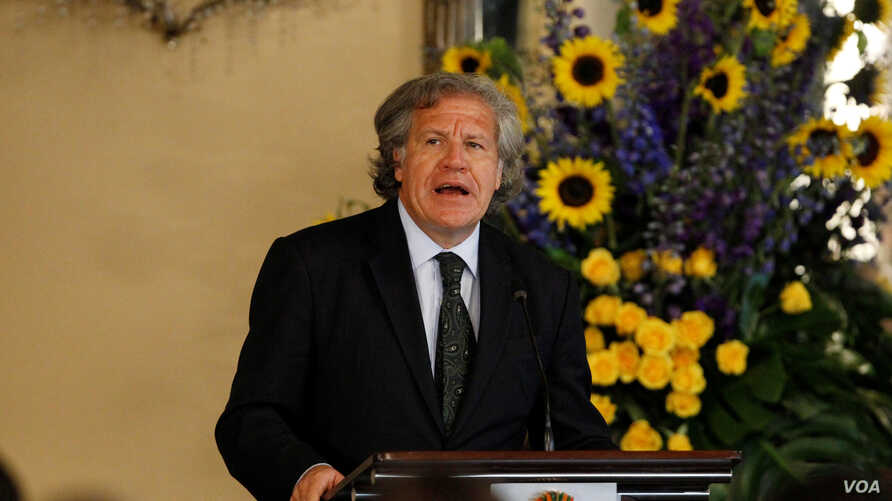 Organization of American States (OAS) Secretary-General Luis Almagro addresses the audience during an official visit to Honduras, in Tegucigalpa, Jan. 17, 2017.