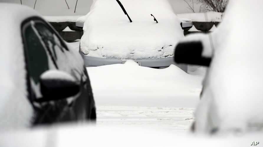 Cars are covered by snow, following a winter storm, Jan. 28, 2019, in Wheeling, Ill. as the entire region braced itself for record-low subzero temperatures.